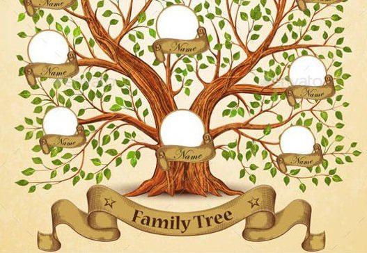 Родовід – Вивчення генеологічного дерева